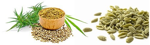 Hemp based foods