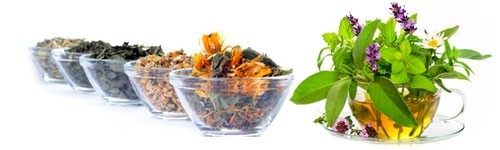 Alimenti Biologici e Naturali